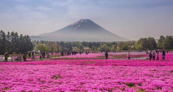 15 самых красивых мест Японии