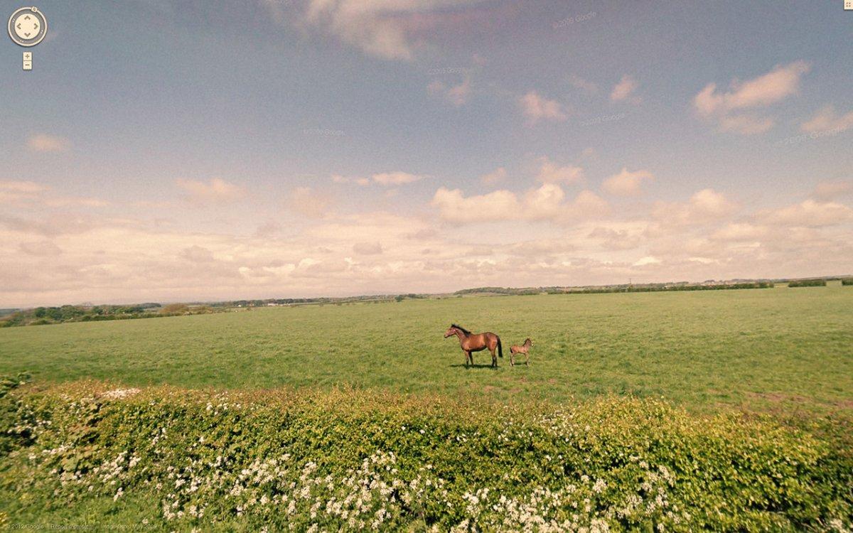 Bigpicture ru he finds beautiful serene landscapes