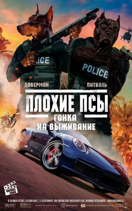 Bigpicture ru 10