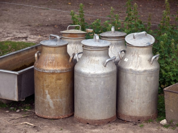 Bigpicture ru depositphotos 8989087 stock photo milk cans jugs in a