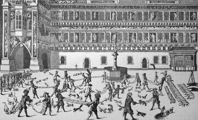 Bigpicture ru fox tossing in the courtyard of dresden fuchsprellen was a popular hft730