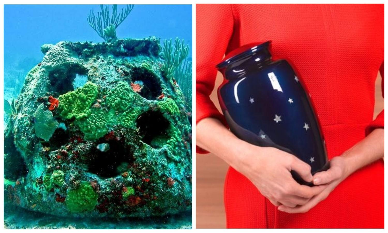Американская фирма ритуальных услуг предлагает превращать прах умерших в коралловые рифы