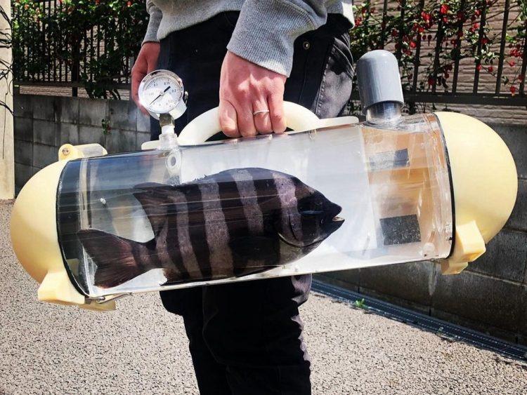 Bigpicture ru portable fish tank 750x563