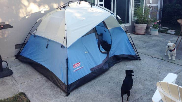 Bigpicture ru 102789177 airbnb tent