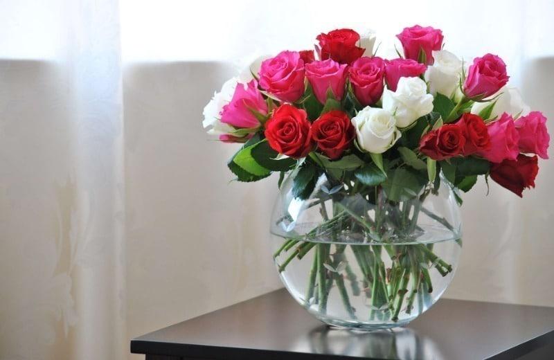 квіти київ