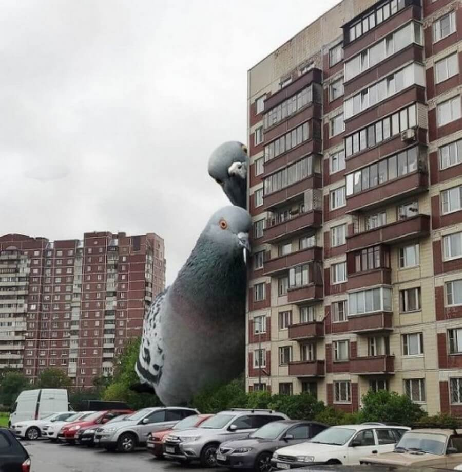 Bigpicture ru monstry 003