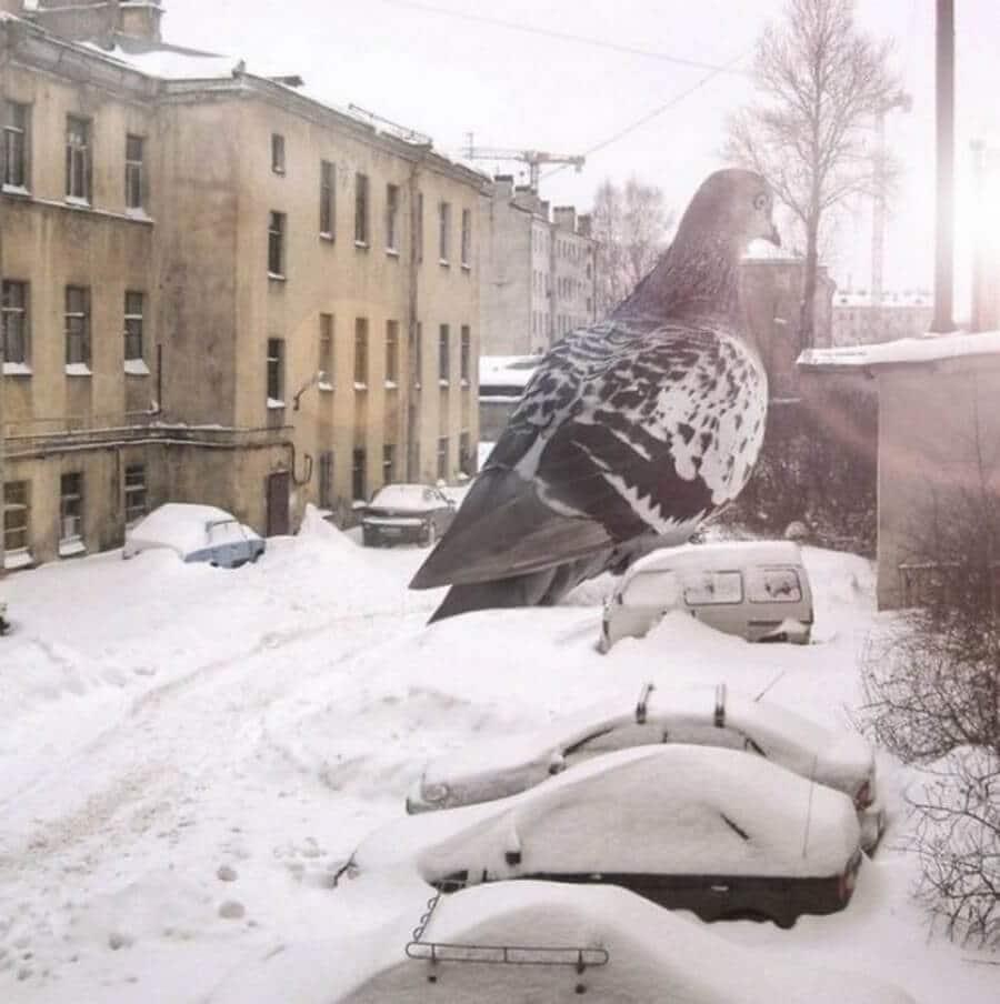 Bigpicture ru monstry 005