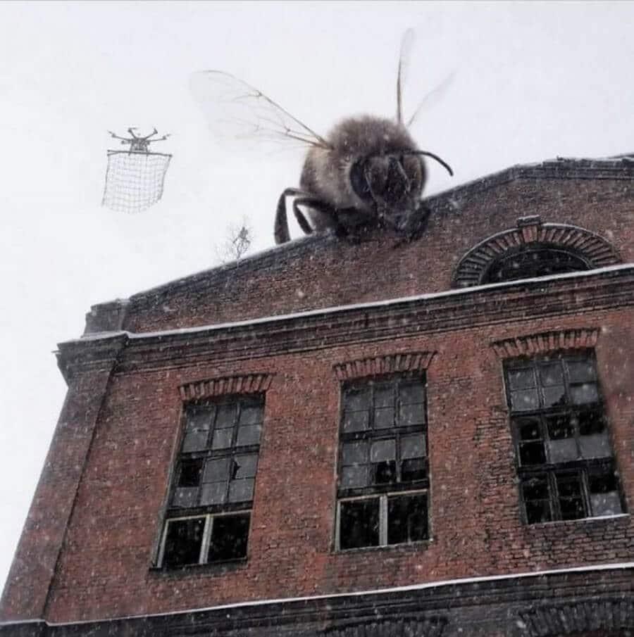 Bigpicture ru monstry 007