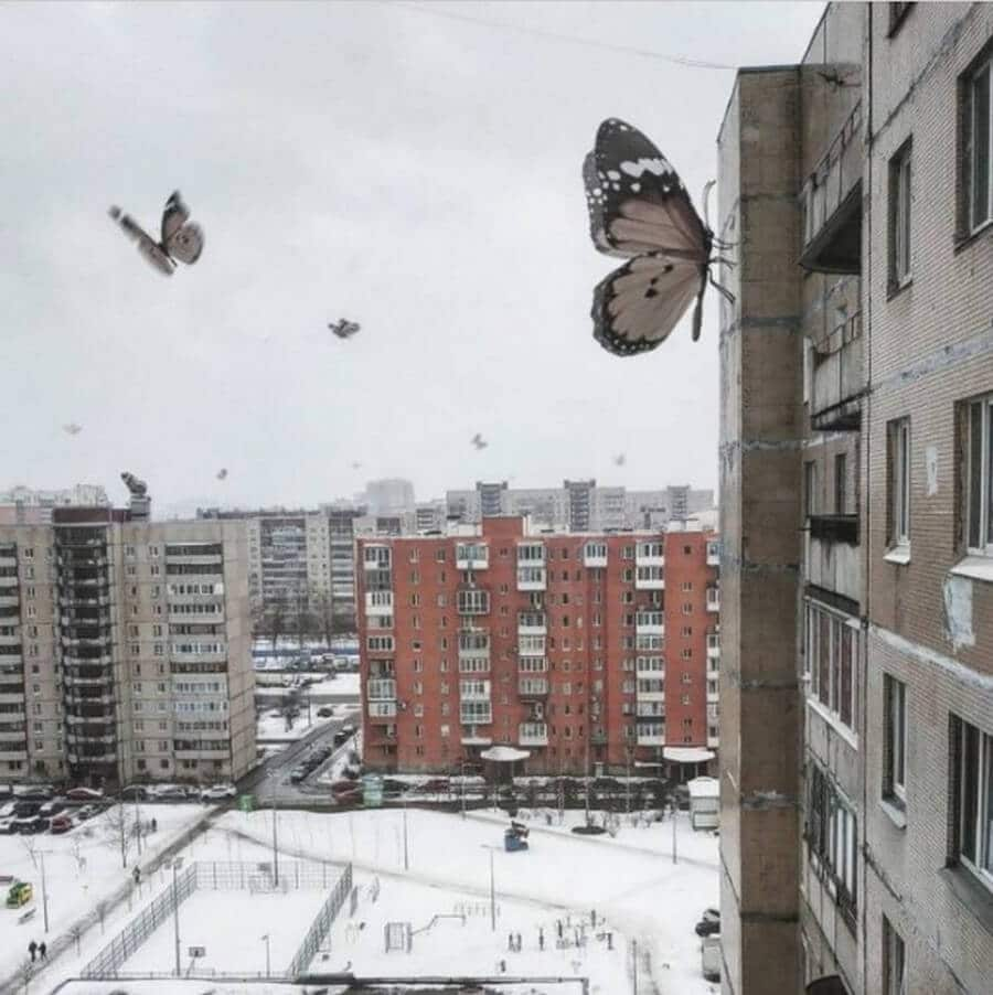 Bigpicture ru monstry 009