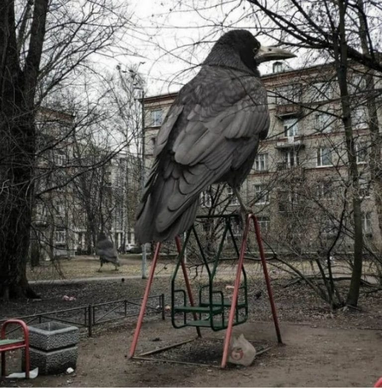 Bigpicture ru monstry 047 768x779