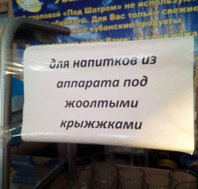 Bigpicture ru 1zhazhda propadyot