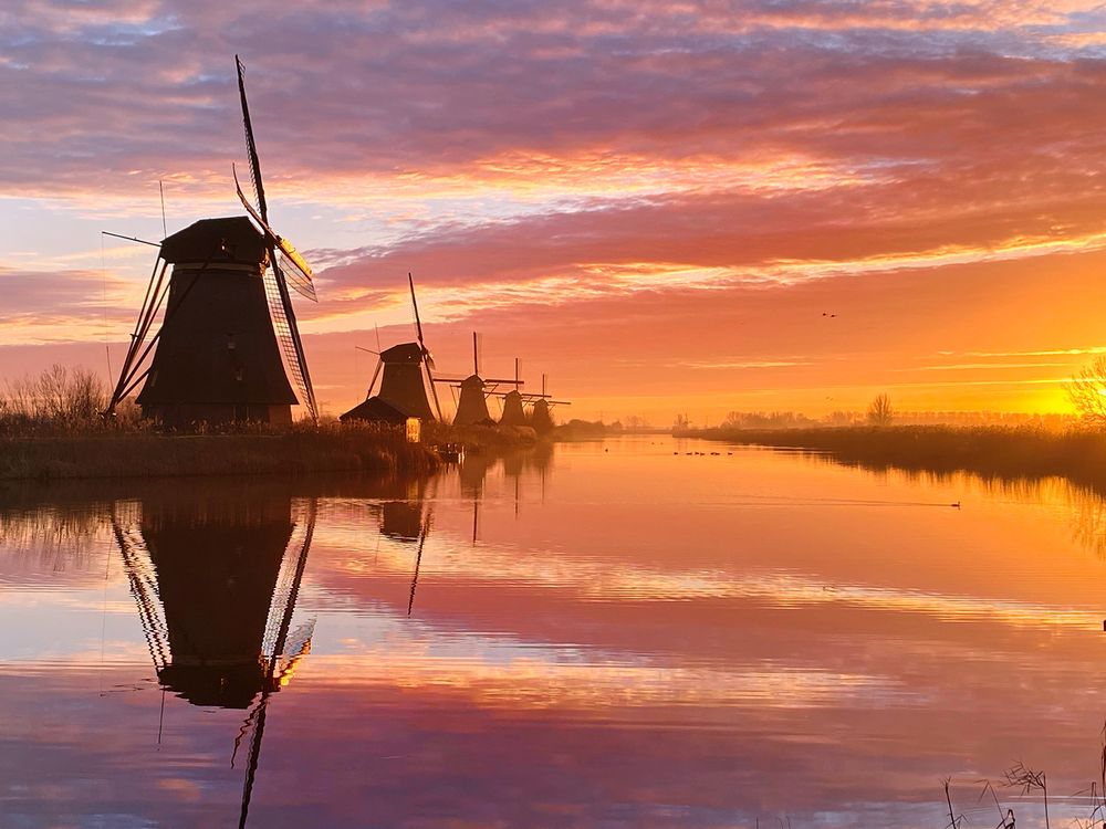 Bigpicture ru 55 sunset 1st claire droppert