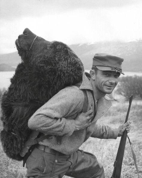 Bigpicture ru bearhead