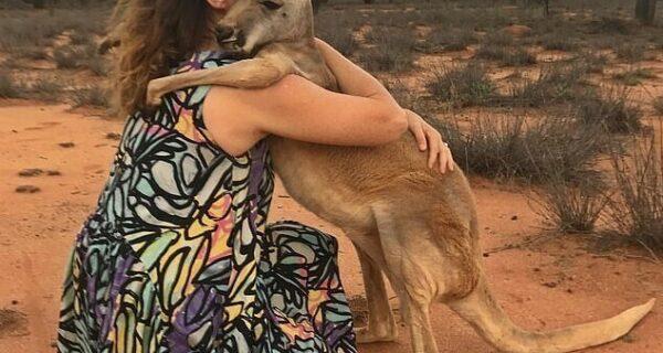Как выглядит самый ласковый кенгуру Австралии, который очень любит обнимашки