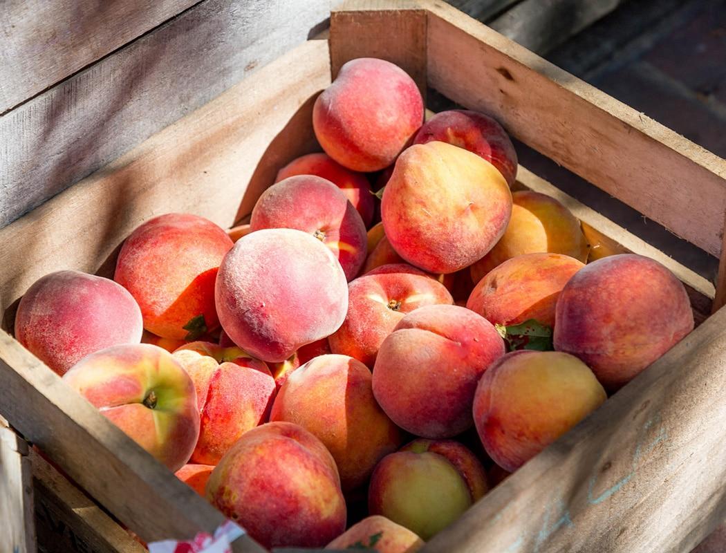 Bigpicture ru peach1