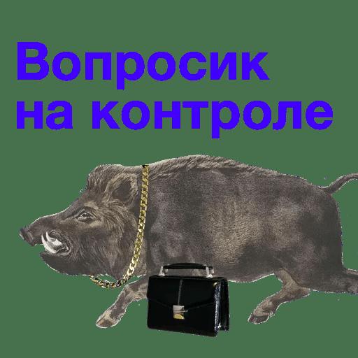 Bigpicture ru 017