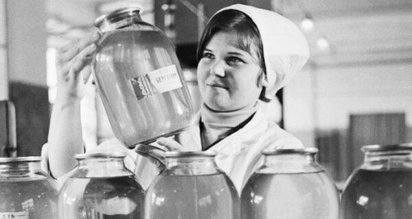 Березовый сок в СССР: чем на самом деле «родина щедро поила» граждан