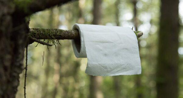Что такое «papierzaki», или Зачем в польских лесах развесили «туалетные» инструкции