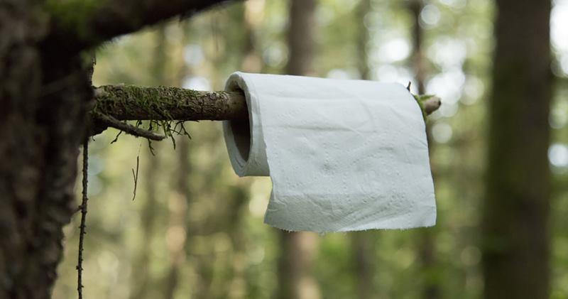 Bigpicture ru c02 0631 backcountry bathroom basics lg