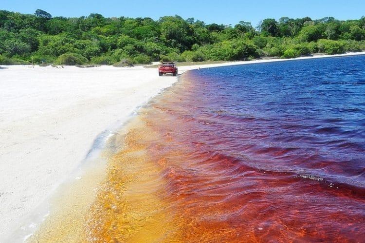 Bigpicture ru coca cola lagoon 750x498