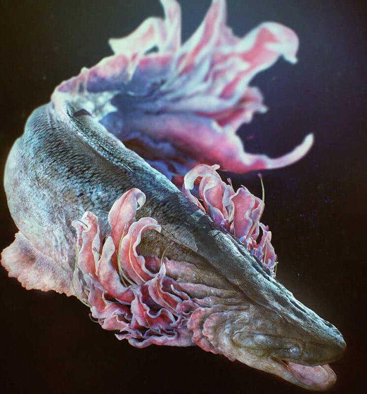 Bigpicture ru yuukimorita frilledfish