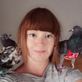 Bigpicture ru 0 pigeon mad woman spends £4000 a year on fashionista rescue pigeons (1)
