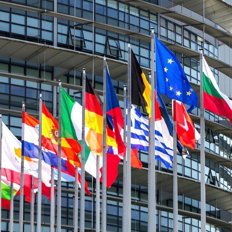 Bigpicture ru гражданство европейского союза