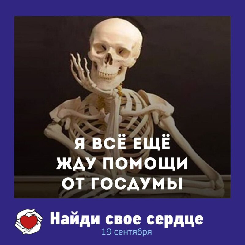 Bigpicture ru странные мемы 4
